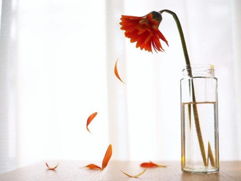 h3-1 造花には「香り」と「諸行無常」が無い